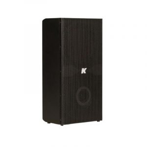 Domino KF210 – Ultra-compact, passive full-range speaker